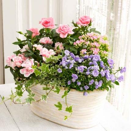 Cesta de rosas y flores variadas