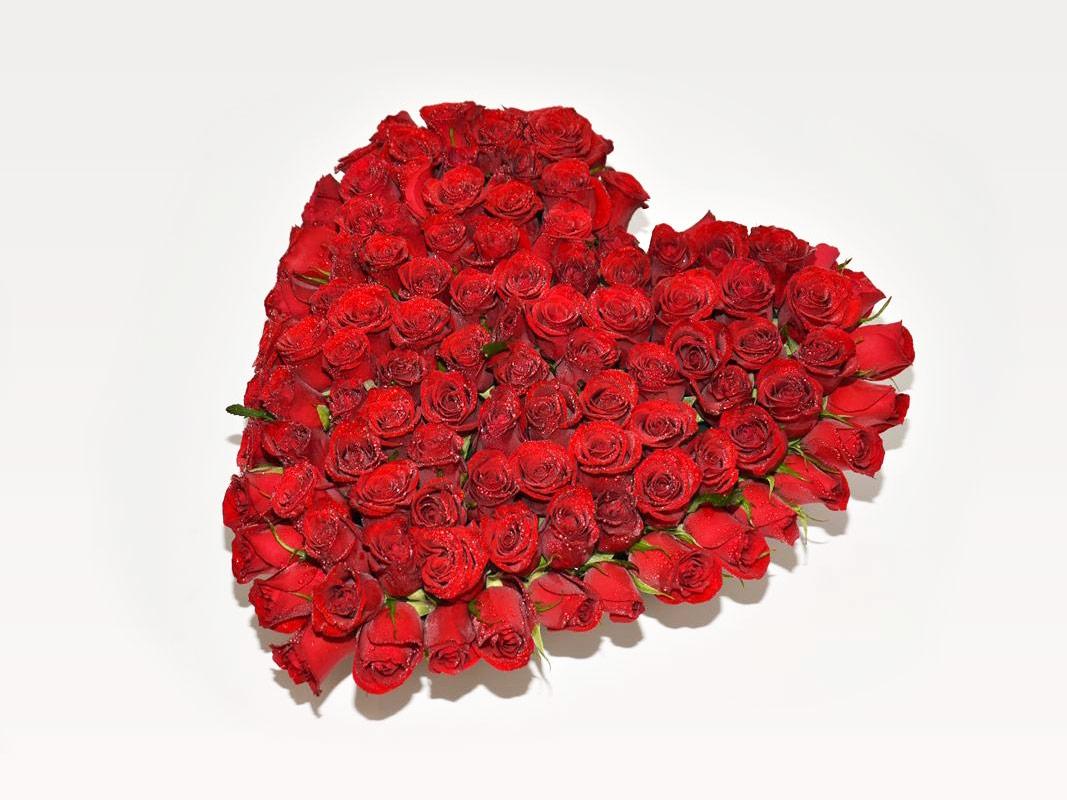 corazn de rosas
