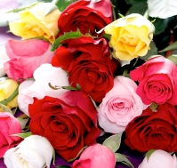 Ramo Rosas de Colores