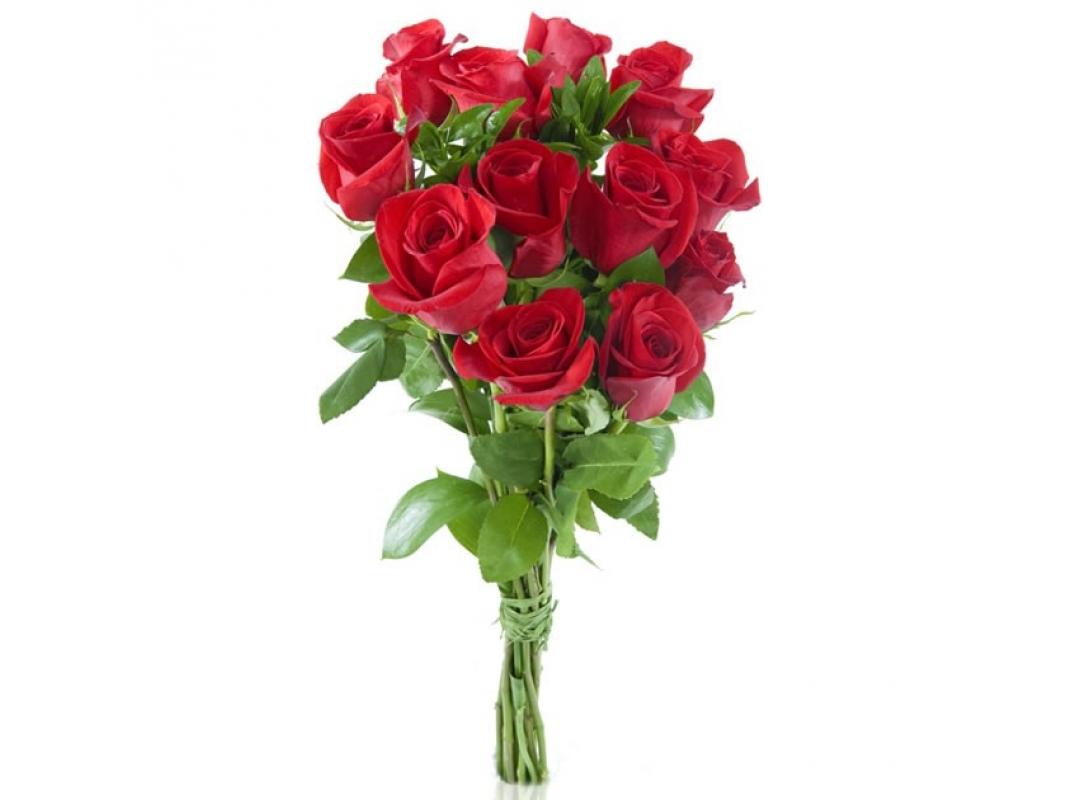 Pin Ramo Rosas Rojas Frescas Bouquet Media Docena Pictures
